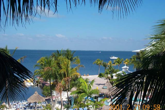 Florida Bay side of Key Largo, as seen from our suite