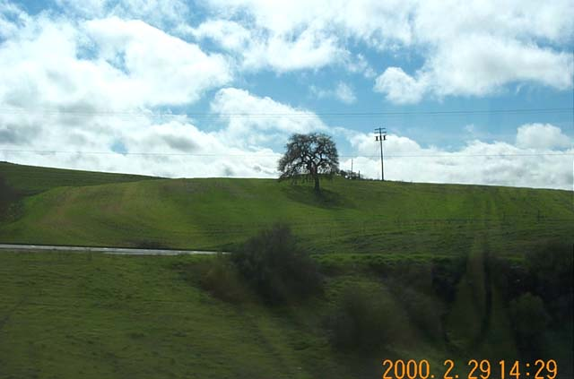 Green hills of Highway 101 6 miles northwest of Paso Robles, California